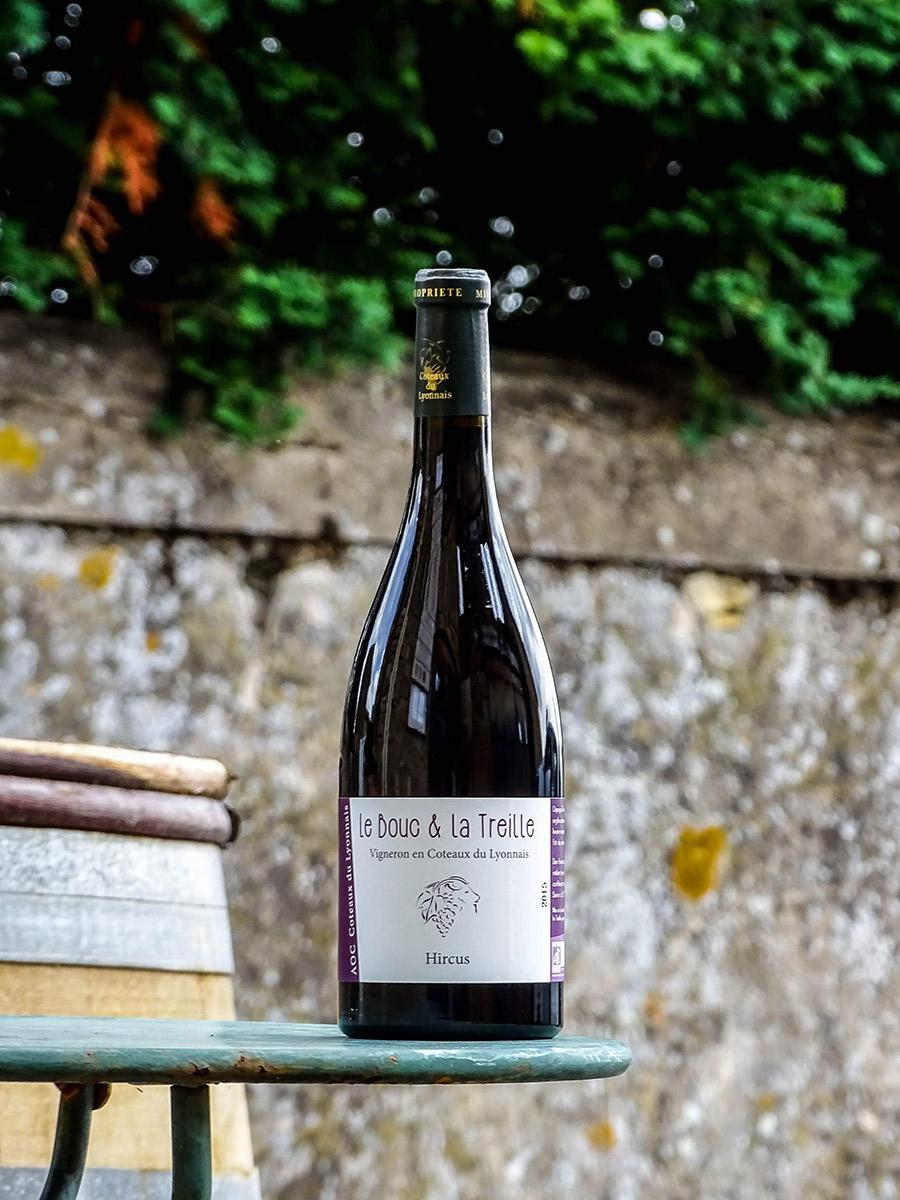 https://www.leboucetlatreille.fr/wp-content/uploads/2019/05/coteaux-du-lyonnais-hircus-rouge.jpg