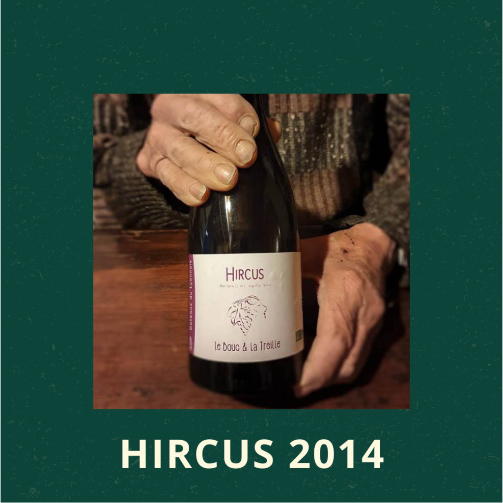 Hircus 2014
